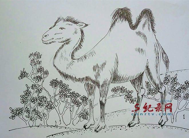兰州书画家魏孔连连环画--你以为你是谁