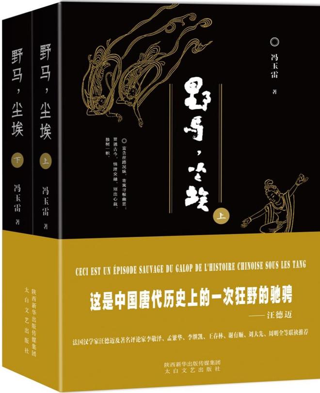【好书推荐】长篇小说《野马,尘埃》出版发行