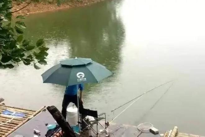 下雨时用这鲫鱼钓法 中鱼率瞬间提高