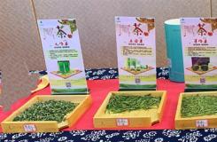 十四中种茶叶滋味类型